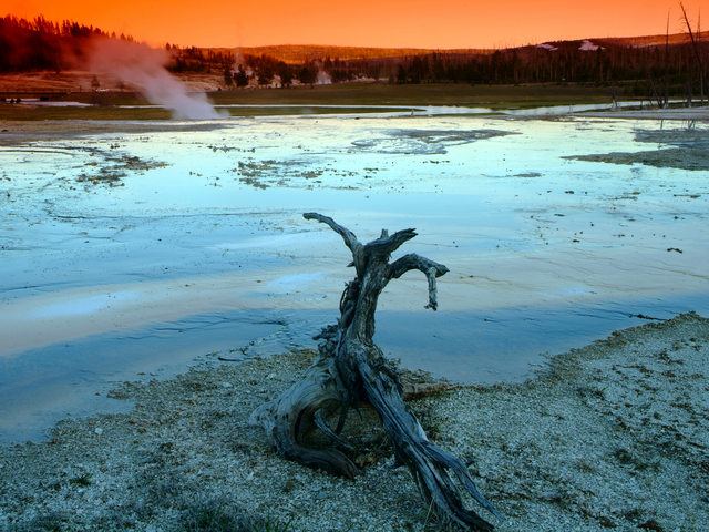 Root lost on geyser field