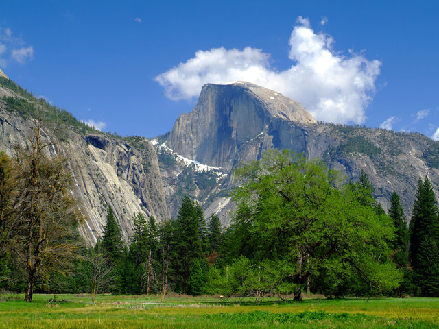 Yosemite Half Dome scenery