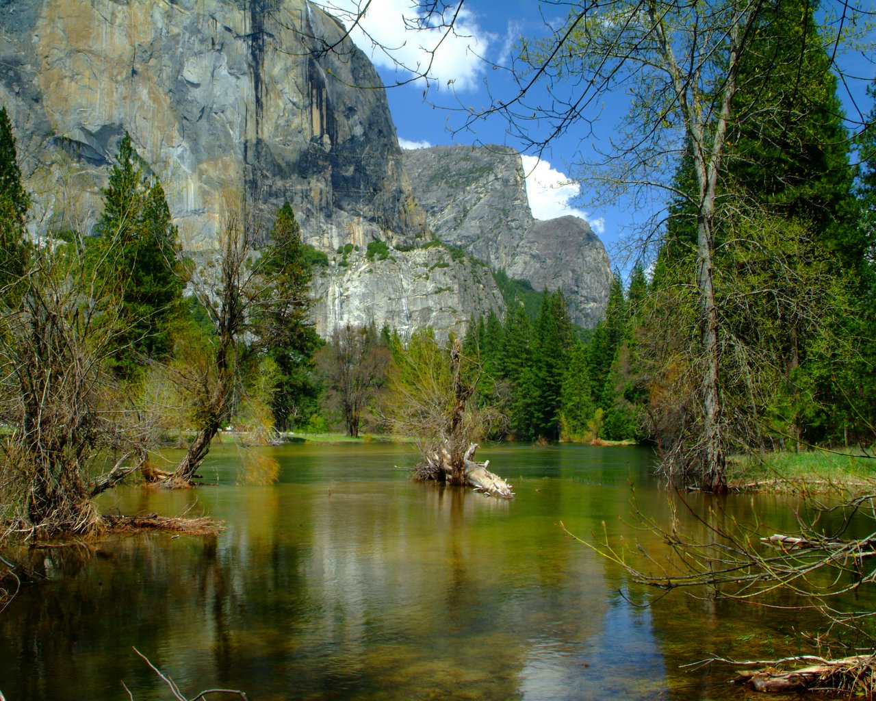 Edenpics natura immagini sfondi gratuite della natura for Immagini per desktop natura